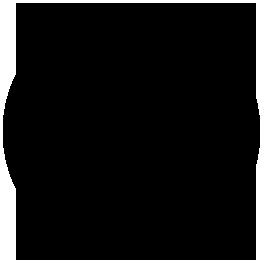 spot borsa